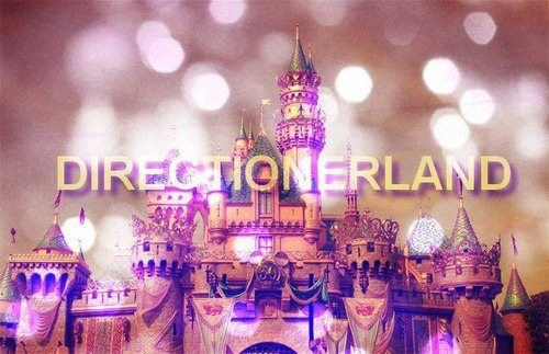 Directionerland 